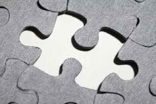 a wordpress plugin is like another piece of the puzzle