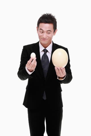 large egg or small egg ...your choice